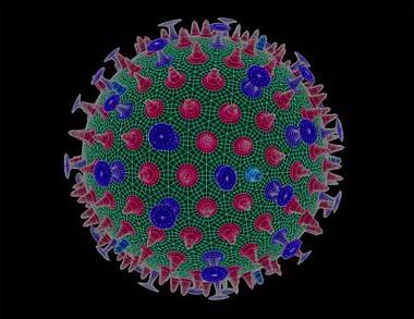Virus influenza A H1N1